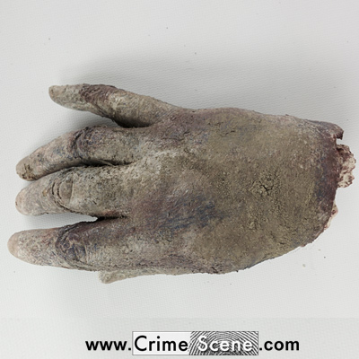 Drunken farmer arrested after brandishing severed hand